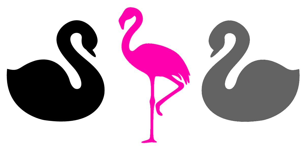 36 Black Swans, Gray Swans, and Pink Flamingoes to Watch in 2018