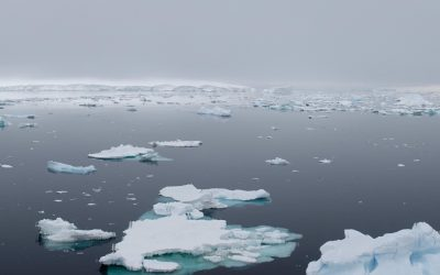 Project 6633 Interview Series: Key Challenges in the Arctic and Antarctic Regions