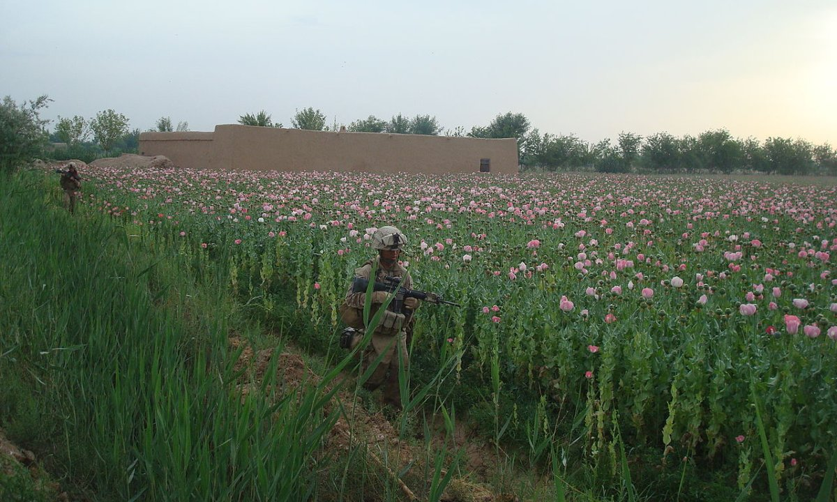 An Unforced Error: How US Attempts to Suppress the Opium Trade Strengthened the Taliban – Modern War Institute